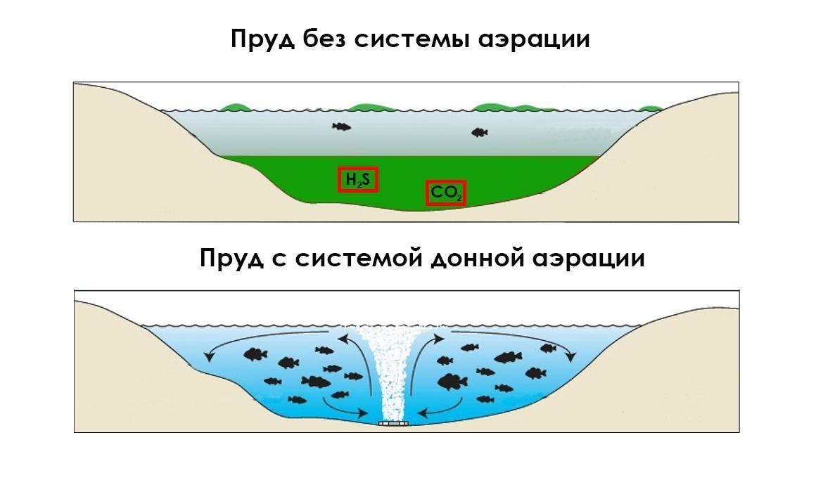 Польза систем аэрации для пруда